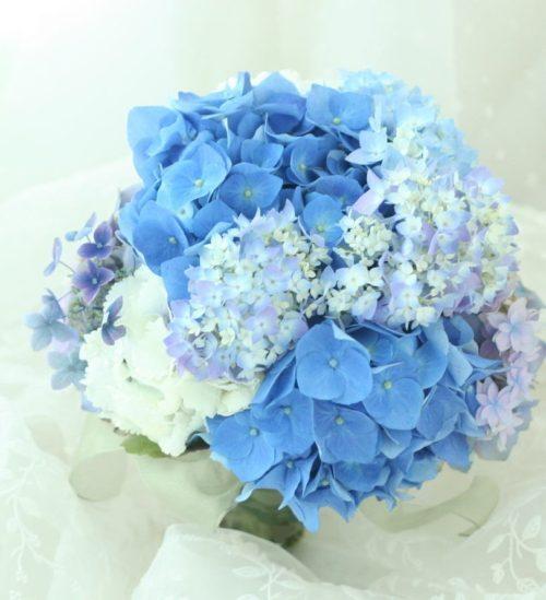 アジサイ:透明感のある白やブルーの色味が涼しさを運んでくれる、初夏にぴったりのお花