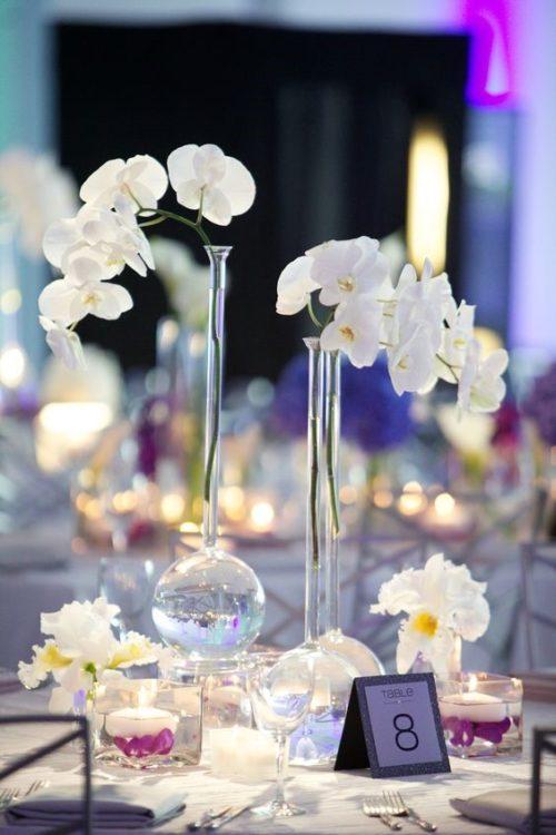 胡蝶蘭:優美で気品ただよう花姿が圧倒的な存在感!胡蝶蘭だけを使って、上質でシンプルなウェディングに