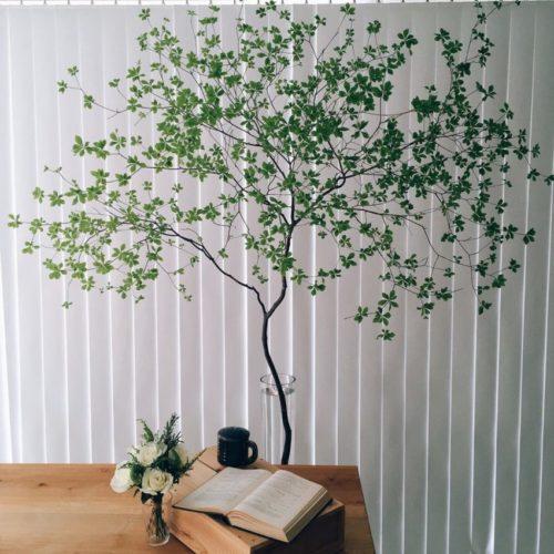 ドウダンツツジ:高さのある枝物で、バンケットを森のようにコーディネート