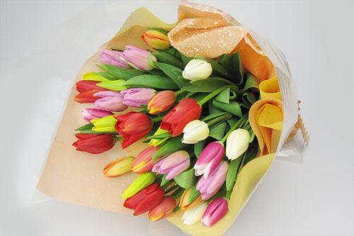 チューリップ:春を代表する花!パステルカラーで春の喜びを表現!