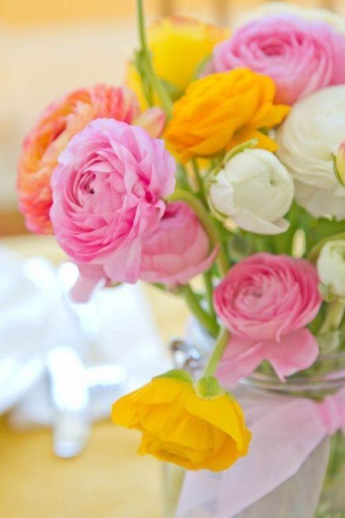 ラナンキュラス:ころんとしたフォルムがかわいい春の花!